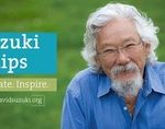 David Suzuki Fellowships: Deadline January 15