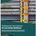 Professionals' Best Practices for Low Carbon Resilience: Phase 1